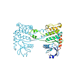 Molmil generated image of 4bdh