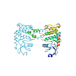 Molmil generated image of 4bdj