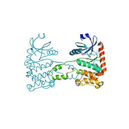 Molmil generated image of 4bdk