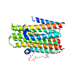 Molmil generated image of 4brb