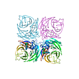 Molmil generated image of 4cpn
