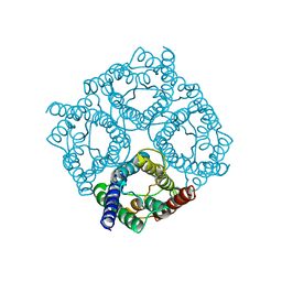 Molmil generated image of 4csk