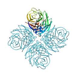 Molmil generated image of 4d8s