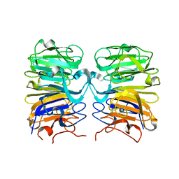 Molmil generated image of 4d9s