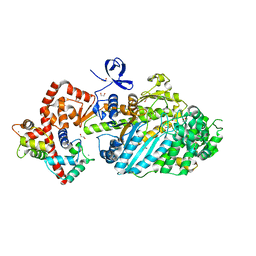 Molmil generated image of 4dbp