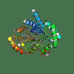 Molmil generated image of 4dbu