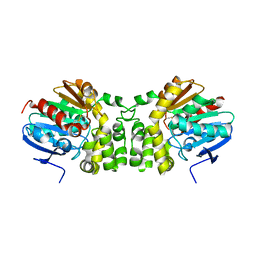 Molmil generated image of 4dm7