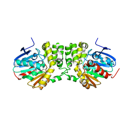 Molmil generated image of 4dmh