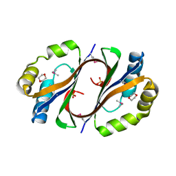 Molmil generated image of 4dn9