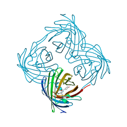Molmil generated image of 4dxq