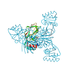 Molmil generated image of 4dy6