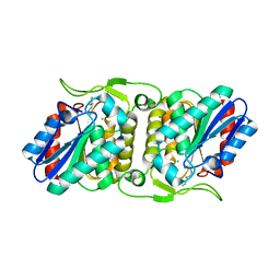 Molmil generated image of 4fbl