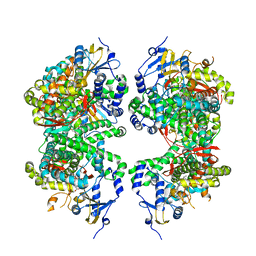 Molmil generated image of 4fdh