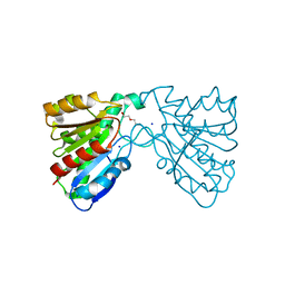 Molmil generated image of 4fhz