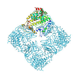 Molmil generated image of 4fiy
