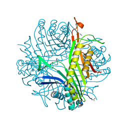 Molmil generated image of 4fsk