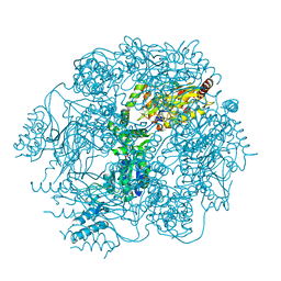 Molmil generated image of 4fwg