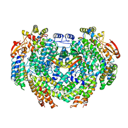 Molmil generated image of 4gam
