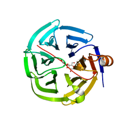 Molmil generated image of 4gnc
