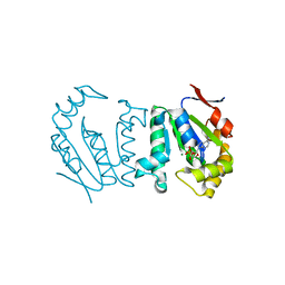 Molmil generated image of 4gp6