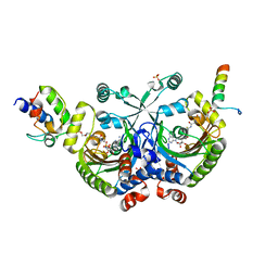 Molmil generated image of 4h2t
