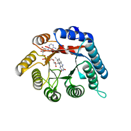 Molmil generated image of 4h6r