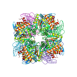 Molmil generated image of 4hhh