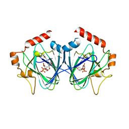 Molmil generated image of 4hmz
