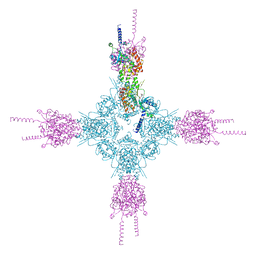 Molmil generated image of 4hnd