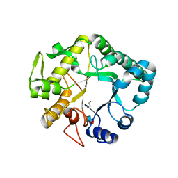 Molmil generated image of 4hpg