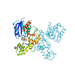 Molmil generated image of 4htl