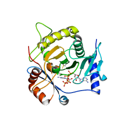 Molmil generated image of 4i5v