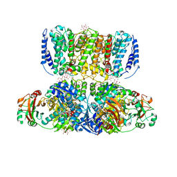 Molmil generated image of 4j9u