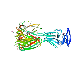Molmil generated image of 4jdo