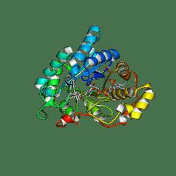 Molmil generated image of 4jtq