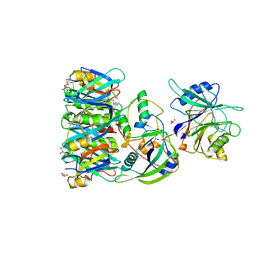 Molmil generated image of 4k6l