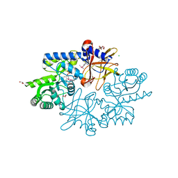 Molmil generated image of 4kbx