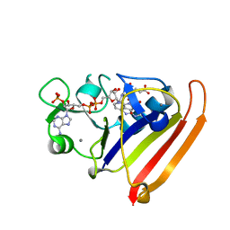 Molmil generated image of 4kjk