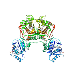 Molmil generated image of 4ky4