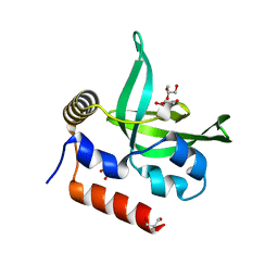 Molmil generated image of 4l1p