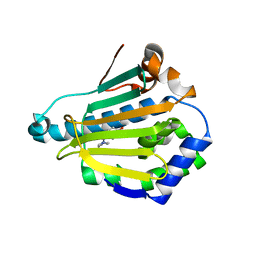 Molmil generated image of 4l94