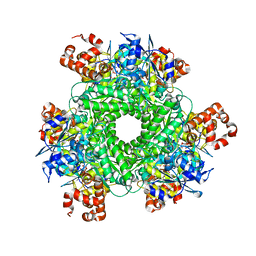 Molmil generated image of 4lf1
