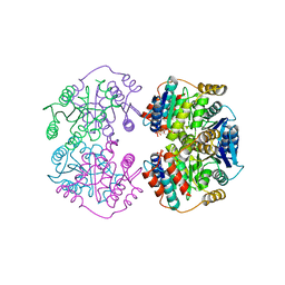 Molmil generated image of 4lfl