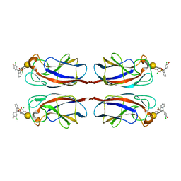 Molmil generated image of 4lk6