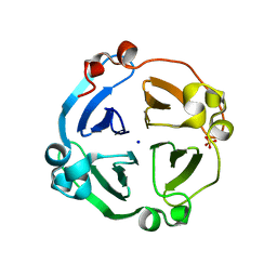 Molmil generated image of 4ll2