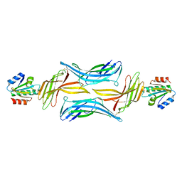 Molmil generated image of 4ll4