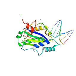 Molmil generated image of 4lvm