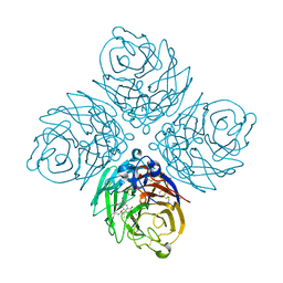 Molmil generated image of 4mju