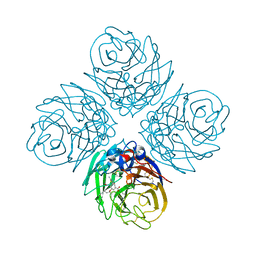 Molmil generated image of 4mjv