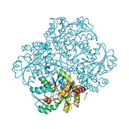 Molmil generated image of 4mkj